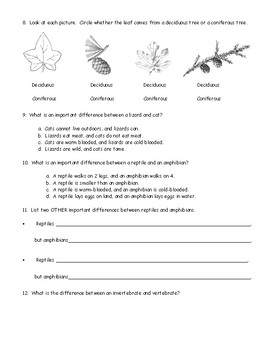 4th Grade Animal and Plant Classification Test