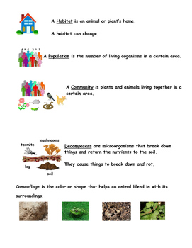 4th Grade Communities Review Study Guide with Pictures