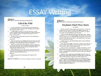 4th Grade ELA Essay Test Prep