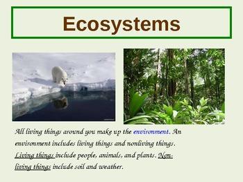 4th Grade Ecosystems Power Point Presentation
