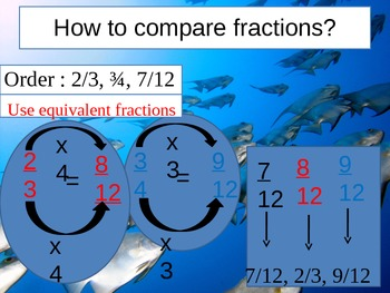 4th Grade Hought-Miff Fractions Review lesson 9-14