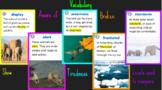 "4th Grade Journeys Lesson 13 ""Antarctic Journal..."" Google Slides Presentation"