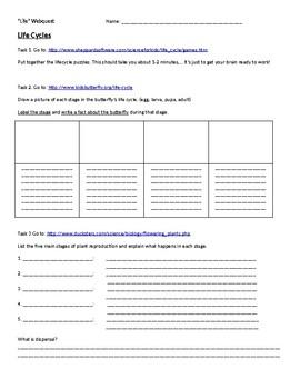 4th Grade Life Webquest
