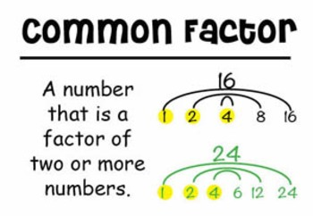 4th Grade Math Vocabulary Cards: Fraction Equivalence and Comparison (Large)