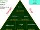 4th Grade Math Vocabulary Triangle Trivia