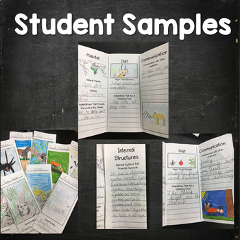 4th Grade NGSS Life Science Tri-Fold