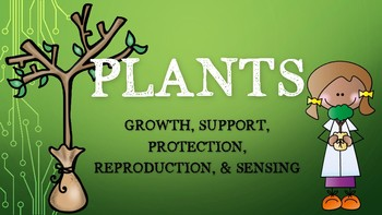 4th Grade NGSS Plants Bundle