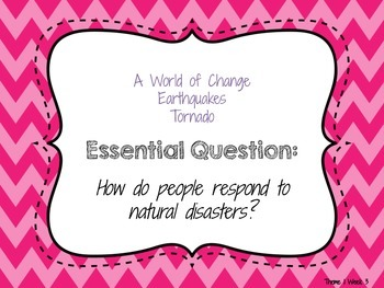 4th Grade Reading Wonders Essential Questions Posters