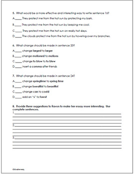 4th Grade STAAR Writing Editing and Revising Practice Tests