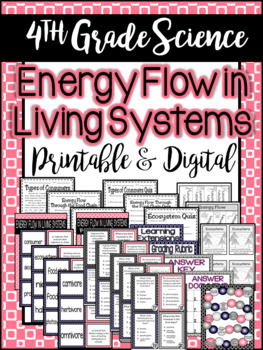 4th Grade Science: Energy Flow in Living Systems (TEKS Unit 8)