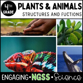 4th Grade Science Bundle -  NGSS - Four Complete Units - Entire Year