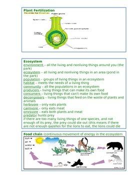 4th Grade Science Florida Standards Assessment FSA Study Guide