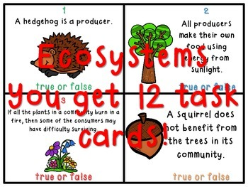 4th Grade Science True or False Task Card BUNDLE - GA Milestones!
