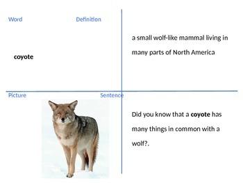 4th grade Reading Street Coyote School News U2W2 vocab powerpoint