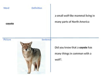 4th grade Reading Street Coyote School News U2W2 vocab powerpoint