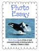 "4th grade Treasures Reading Unit 4 Week 4 ""Adelina's Whale"""