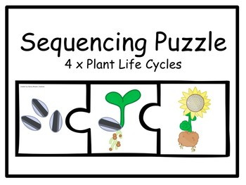 4x Plant Sequencing Puzzles