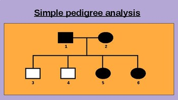 5.6 Chromosomal Inheritance Lecture Slides