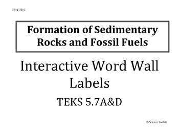 Science TEKS 5.7 A&D Interactive Word Wall Labels and Examples