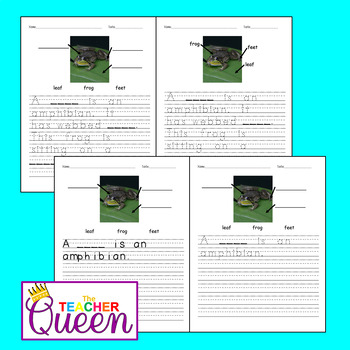 5 Amphibians No-prep, Differentiated Picture Prompts for Writing
