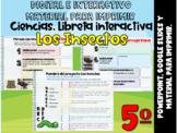 5º Grado_Los Insectos: Libreta interactiva ⏺PowerPoint y G. Slides