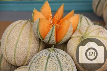 6 - CANTALOUPE MELON [By Just Photos!]