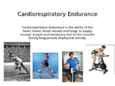 5 Components of Fitness PowerPoint Slides for Presentation