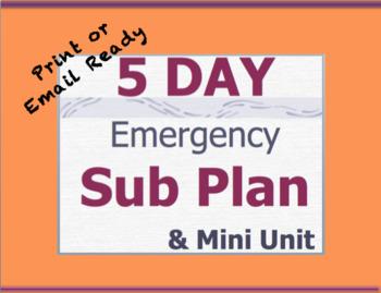 5 Day English Sub Plans - Middle School or High School English Emergency  Plans