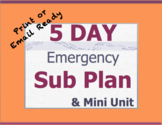 5 Day English Sub Plans - Middle School or High School Eng