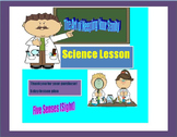 5 Day Lesson Plan on the Five Senses (Sight)