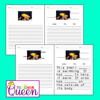 5 Fish No-prep, Differentiated Picture Prompts for Writing