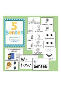 5 (Five) Senses Literacy Pack