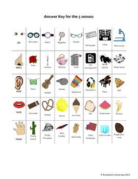 5 Games to investigate the Five Senses
