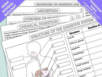 69 best Science images on Pinterest | Science ideas, School and ...