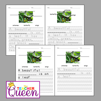 5 Insects No-prep, Differentiated Picture Prompts for Writing