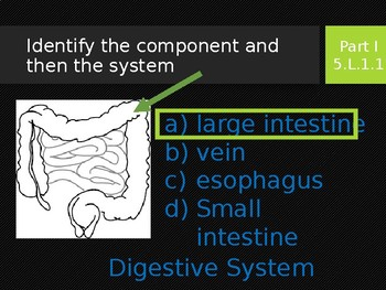 5.L.1.2. Human Body, Systems, Organs SystemInteactions_A