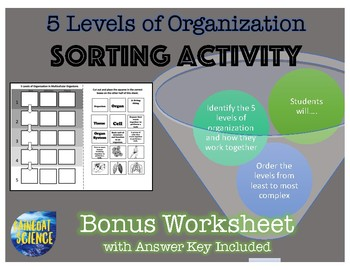 5 Levels of Organization Sorting Activity