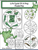 5 Life Cycle Of A Frog Puzzle Pies