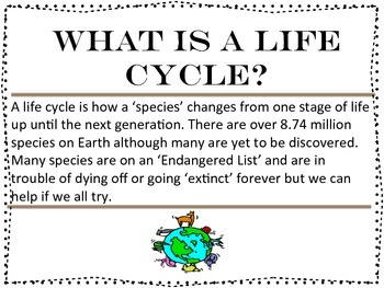 5 Life Cycle Posters Mini Lesson for both Decoration & Play