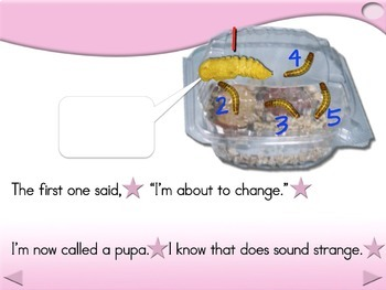 5 Little Mealworms - Animated Step-by-Step Poem - Regular