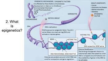 5 Misconceptions in Genetics PowerPoint
