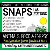 5-PS3-1 Animals' Food and Energy Lab Stations Activity - Printable & Digital