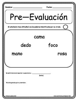 5 Palabras CVCV  ( 5 Spanish CVCV words and 4 Spanish HFW)