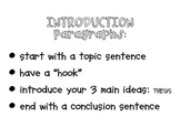 5 Paragraph Essay Reminder Posters