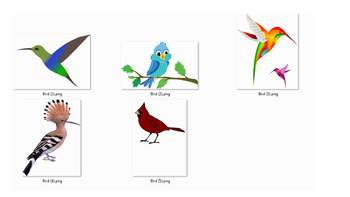 5 Picture of Bird Cartoon Art PNG file
