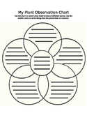 5-Plant Comparison Venn Diagram, Lesson Plan, and Differentiated Assessments