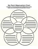 5-Plant Comparison Venn Diagram, Lesson Plan, and Differen