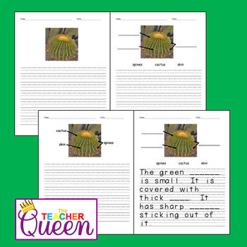 5 Plants No-prep, Differentiated Picture Prompts for Writing