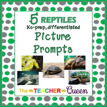 5 Reptiles No-prep, Differentiated Picture Prompts for Writing