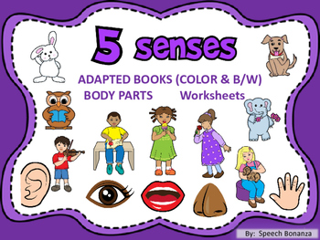 5 SENSES Body Parts and Pronouns- Adapted Books (Color & B/W)
